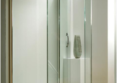 ILLUSION SIDE ACCESS SHOWER DOOR