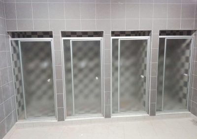 SILHOUETTE PIVOT SHOWER DOOR