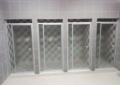 SILHOUETTE PIVOT SHOWER DOOR